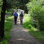 Two men walk down trail in summer.